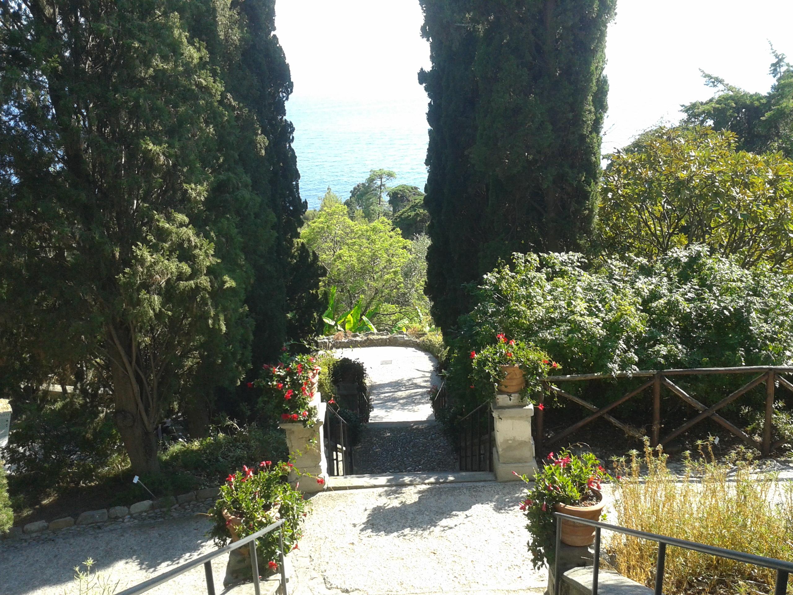 In un libro la meraviglia degli Hanbury di Ventimiglia
